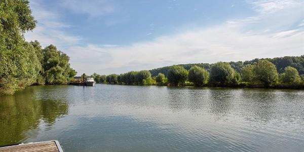 Der Rhein, nur wenige Meter entfernt