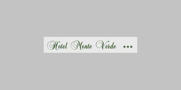 HOTEL-MONTEVERDE logo