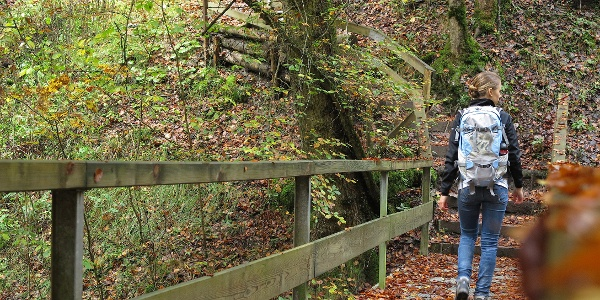 Die Tour durch die Gottéron-Schlucht führt über etliche Brücken.