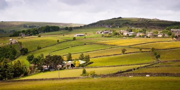 Fields near Heptonstall Moor