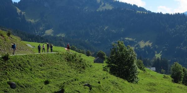 Ein kurzes Stück auf dem Amdener Höhenweg.