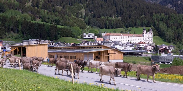 Center Sursilvan  - Klosterstall