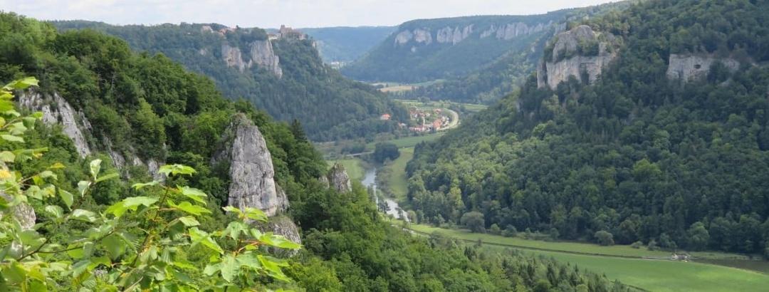 Donautal mit Burg Werenwang