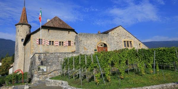 Das Schloss Boudry beherbergt ein Winzermuseum.