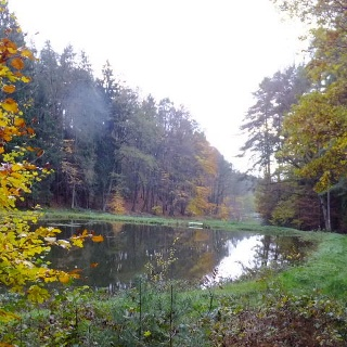 Wanderung vor Birnbaum