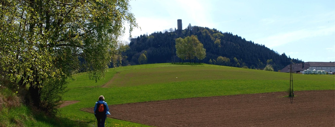 Ruine Waxenberg im Blick