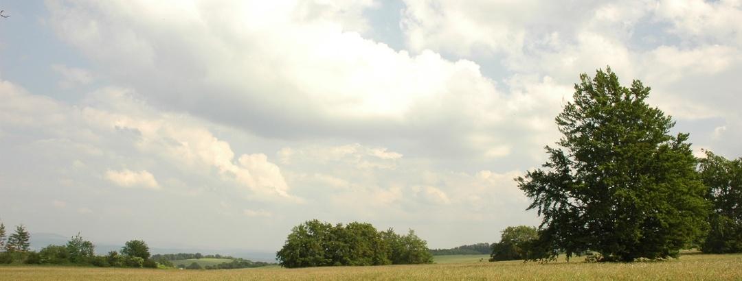 Ausblick vom Hahnberg