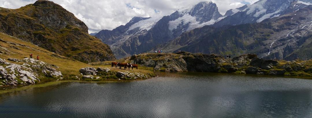 Lac Lérié mit dem Écrins-Massiv im Hintergrund