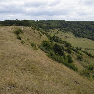 Haresfield Beacon