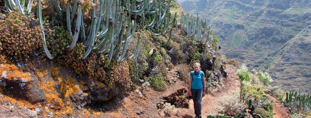 Wanderung im Anaga-Gebirge