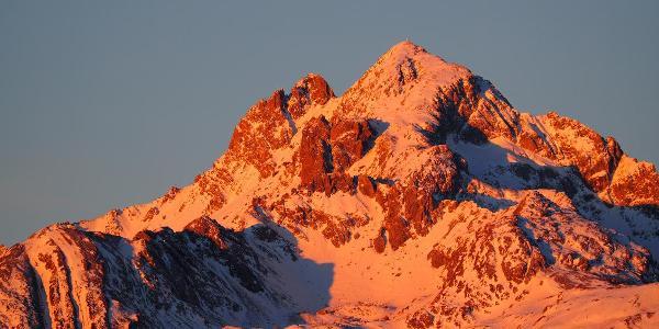 Hochstadel-Gipfel in der Morgensonne von der Leppen aus