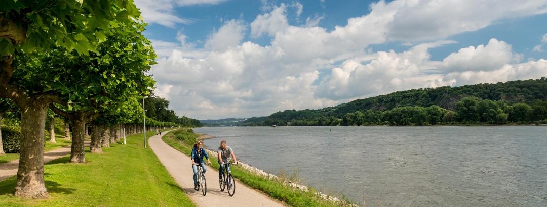 Rhine Cycle Route near Bad Breisig