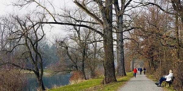 Der Limmatuferweg ist bei Spaziergängern beliebt.