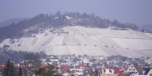 Metzinger Weinberg mit Schnee
