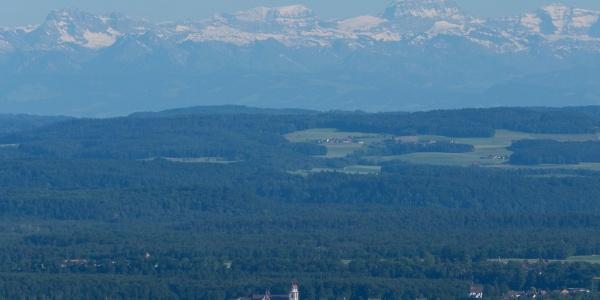 Blick vom Beringer Randenturm über die Klosterinsel Rheinau zum Tödi
