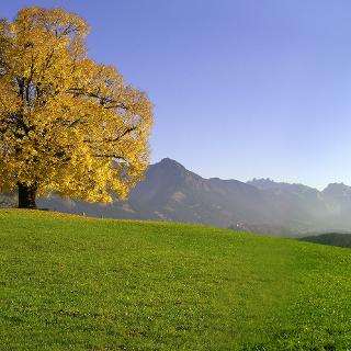 Wittelsbacher Höhe