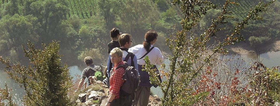 Calmont-Klettersteig - am steilsten Weinberg Europas