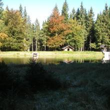 Am Schwarzen Teich 2