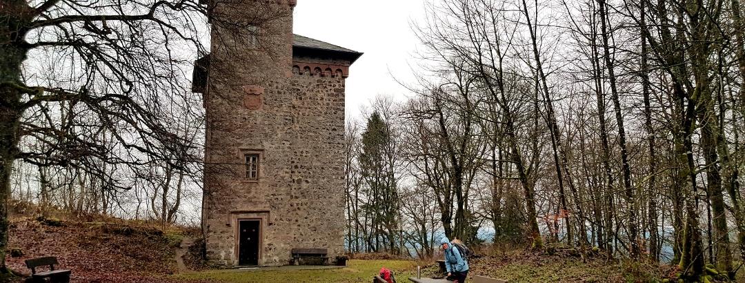 Burgruine Aremberg