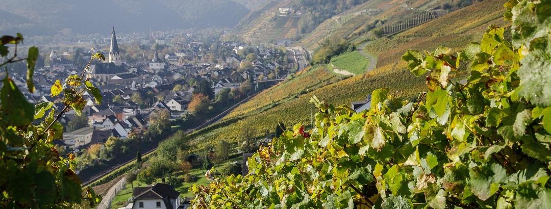Ahrweiler mit Rotweinwanderweg