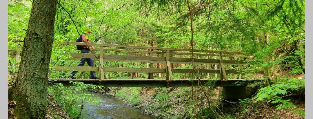 Brücke Fockenbach