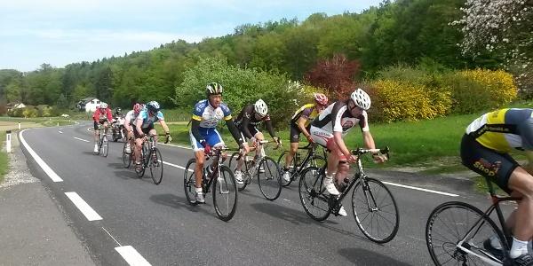Rennradfahren in der Oststeiermark (c) Robert Walcher