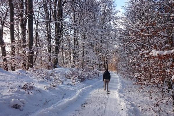 Winterwandern auf der Herreninsel