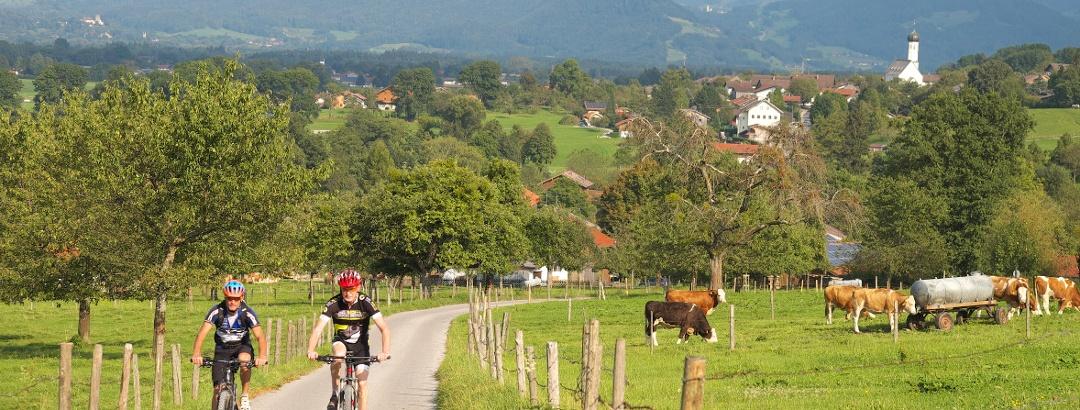 """Auf der Radtour """"Von Baum zu Baum"""" in Richtung Kutterling unterwegs"""