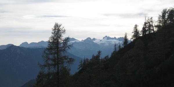 Am-Karl-Stöger-Steig, Blick zum Dachstein