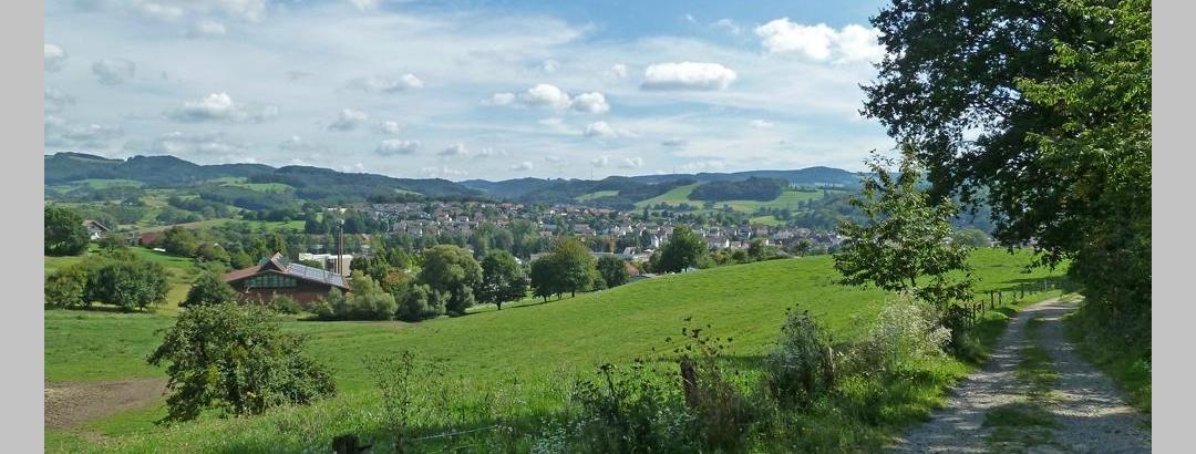 Blick auf Mörlenbach