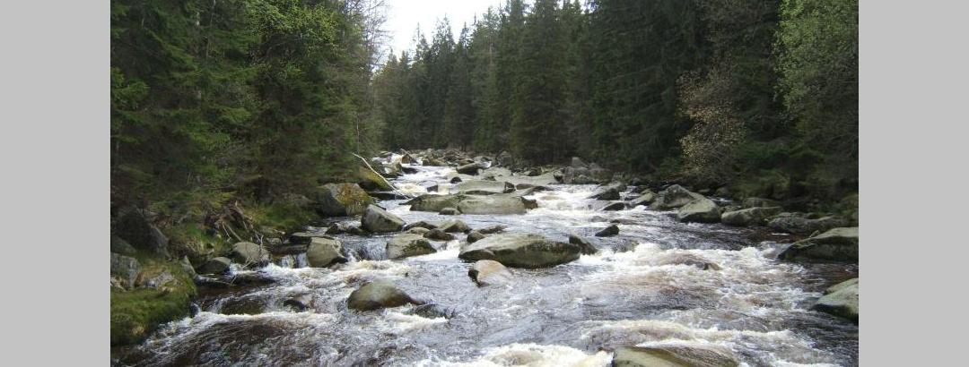 MTB-Transalp von Eisenach in das Erzgebirge