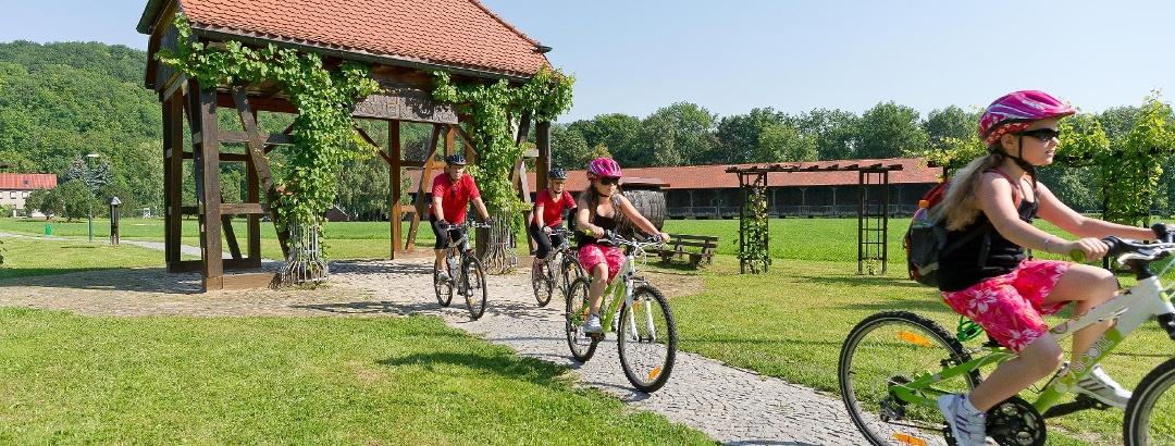 Thüringer Weintor Bad Sulza mit Gradierwerk im Hintergrund
