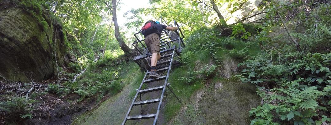 Eine der zahlreichen Aufstiegsleitern zur Schrammsteinaussicht