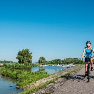Donauradweg bei Au an der Donau