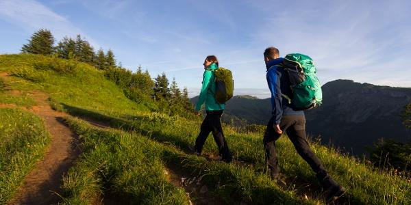 Zwischen Muttelbergkopf und Ochsenhofer Köpfen