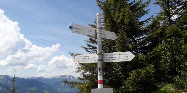 Am Starzeljoch zwischen Bregenzerwald und Kleinwalsertal