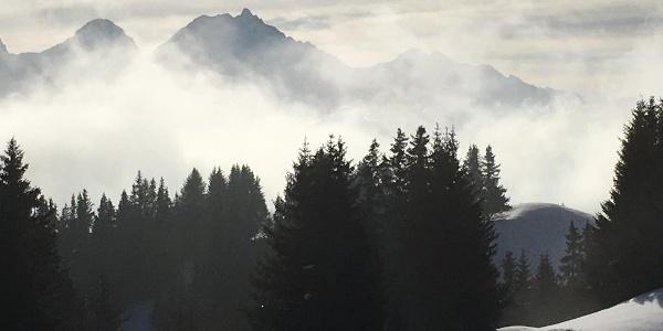 Blick Richtung Albulatal