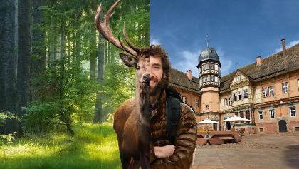 """Spüre Deine Wanderlust in der """"Wilden Heimat"""" - der Solling-Vogler-Region im Weserbergland"""