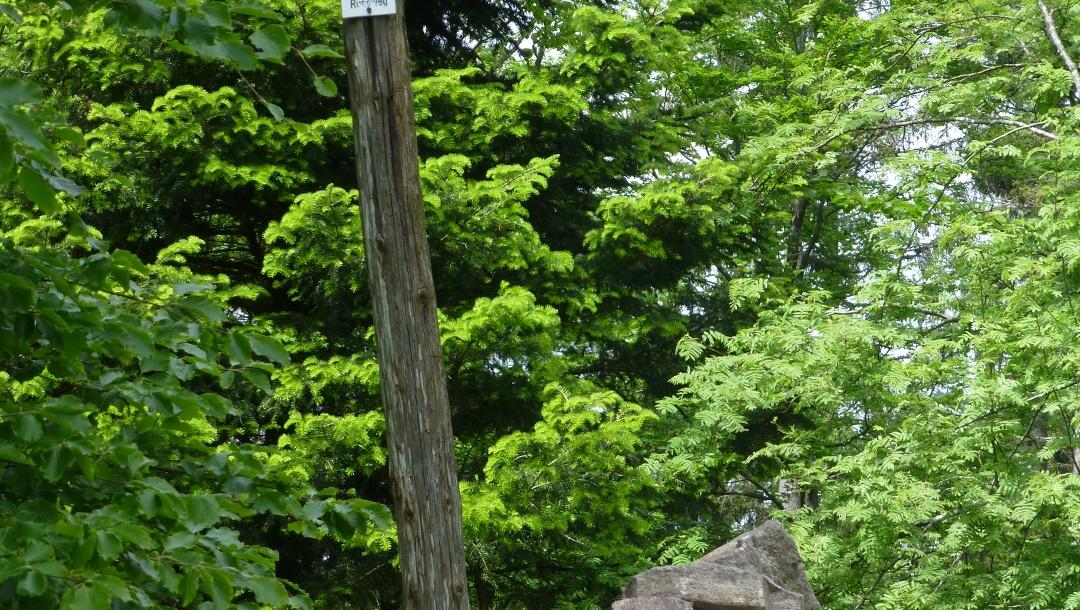Das eigentümliche Gipfelkreuz am Omerskopf