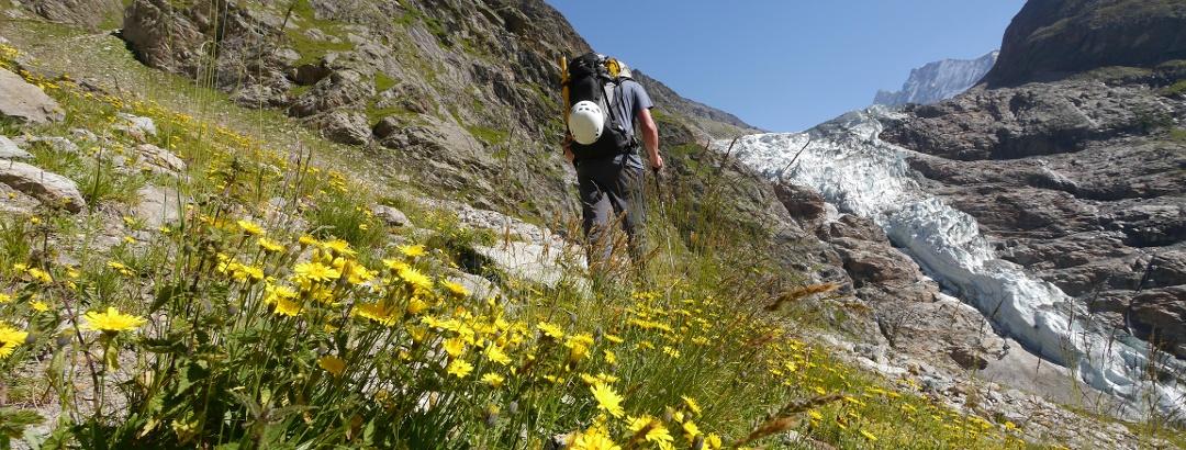 Dem Grindelwaldgletscher entgegen