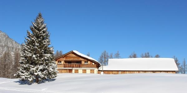Auf dem Winterwanderweg unterwegs zur Alpe Rona