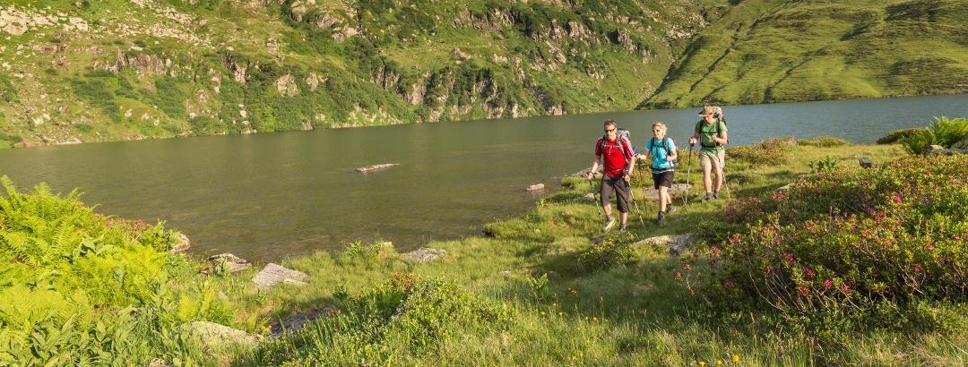 Murg Lake in the Heidiland
