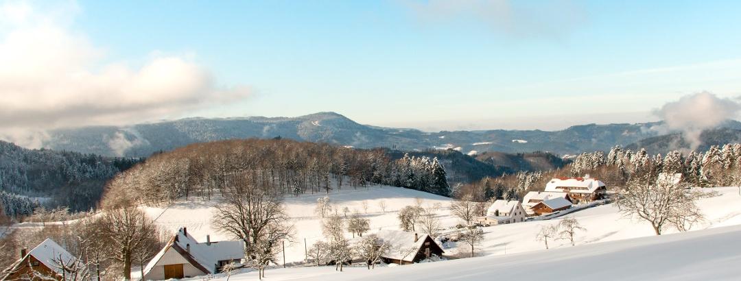 Winter in der Nationalparkgemeinde  Bad Peterstal-Griesbach