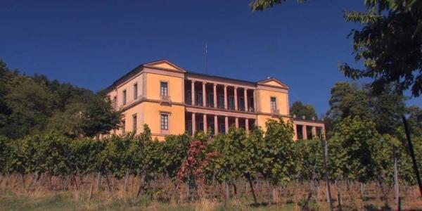 Pfälzer Weinsteig Etappe 6