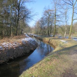 Winter im Baumweg bei den Fischteichen
