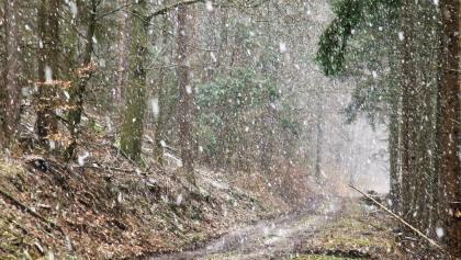 Starker Schneefall unterwegs