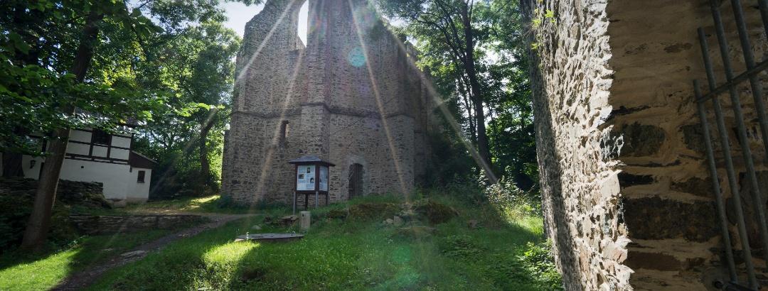 Burgstein Ruine