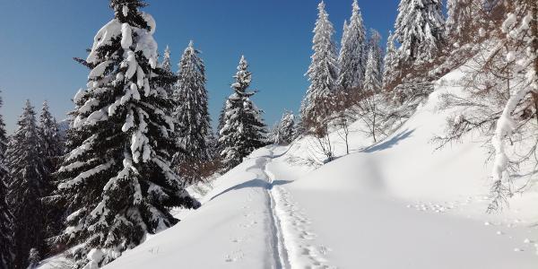 Weg Richtung Rotsohl