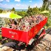 Hoch hinaus mit der Oberweißbacher Bergbahn