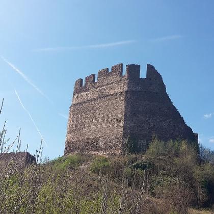 Die Bilderbuch-Ruine Leuchtenburg thront oberhalb des Kalterer Sees weithin sichtbar auf einem der höchsten Punkte des Mitterberges, der wie ein Keil die beiden Südtiroler Obst- und Weinbaugebiete Überetsch und Unterland trennt